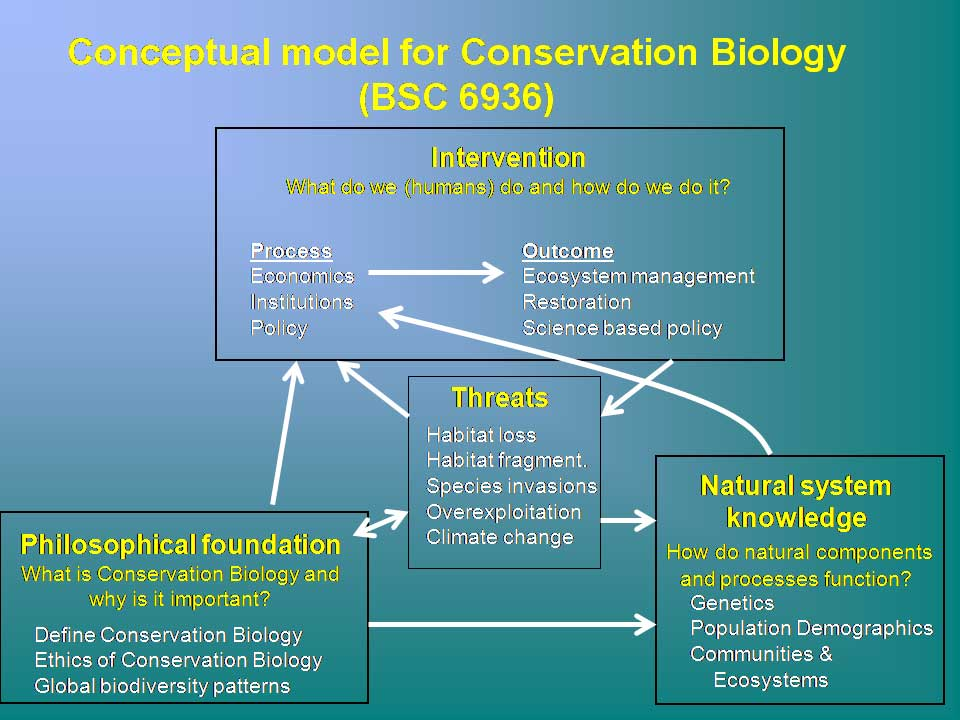 concepts in biology syllabus Biology classes demand that you master difficult concepts such as dna   demands recall of specific concepts and terminology  outlined on your syllabus.